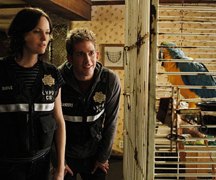 Watch CSI Season 11 Episode 9