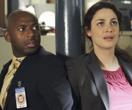 Watch No Ordinary Family Season 1 Episode 13