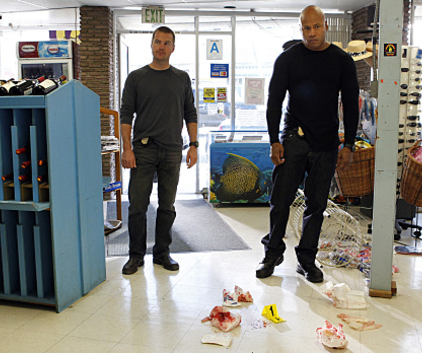 Watch NCIS: Los Angeles Season 2 Episode 17