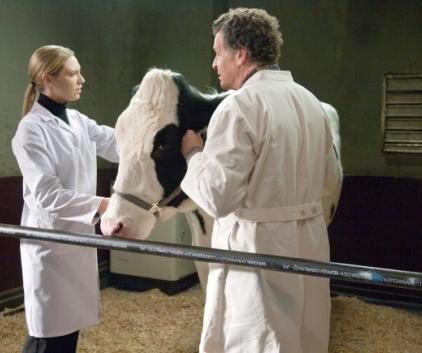 Watch Fringe Season 3 Episode 17