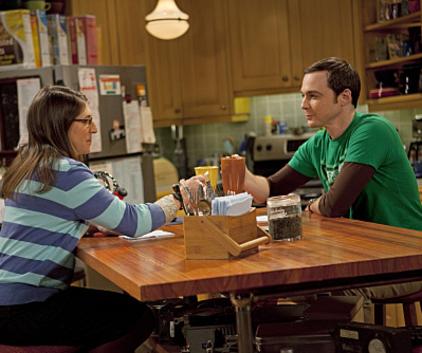 Watch The Big Bang Theory Season 4 Episode 20