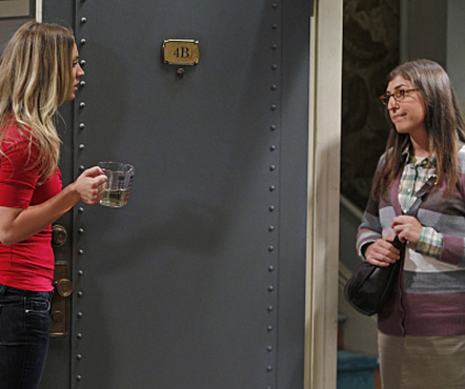 Watch The Big Bang Theory Season 5 Episode 1