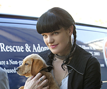 Watch NCIS Season 9 Episode 4