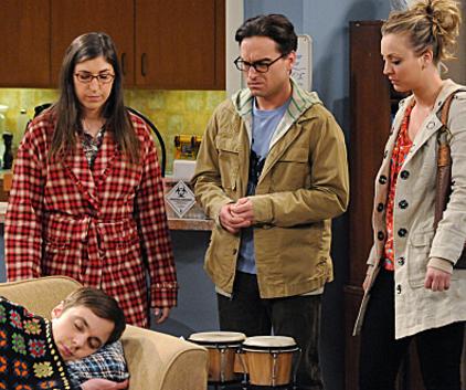Watch The Big Bang Theory Season 5 Episode 18