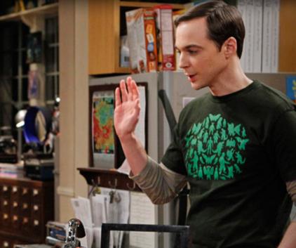 Watch The Big Bang Theory Season 6 Episode 10