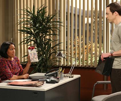 Watch The Big Bang Theory Season 6 Episode 20