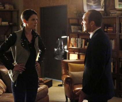Watch Agents of S.H.I.E.L.D. Season 1 Episode 20