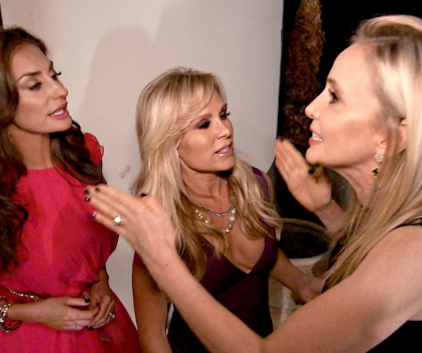 Watch The Real Housewives of Orange County Season 9 Episode 15