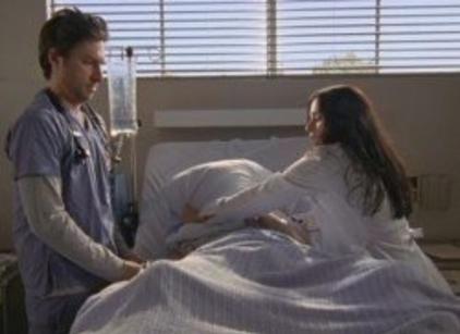 Watch Scrubs Season 8 Episode 2 Online