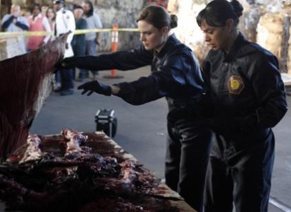 Watch Bones Season 4 Episode 19 Online