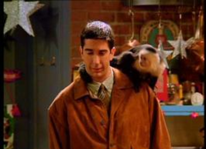 Watch Friends Season 1 Episode 10 Online