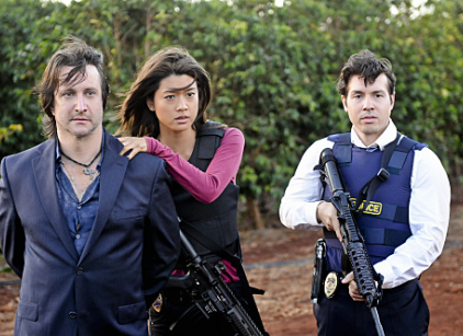 Watch Hawaii Five-0 Season 1 Episode 8 Online
