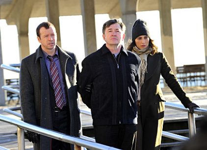 Watch Blue Bloods Season 1 Episode 12 Online