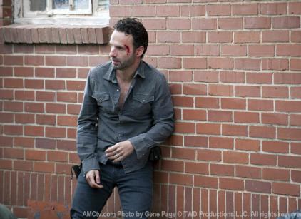 Watch The Walking Dead Season 2 Episode 10 Online