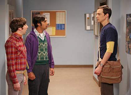 Watch The Big Bang Theory Season 6 Episode 8 Online