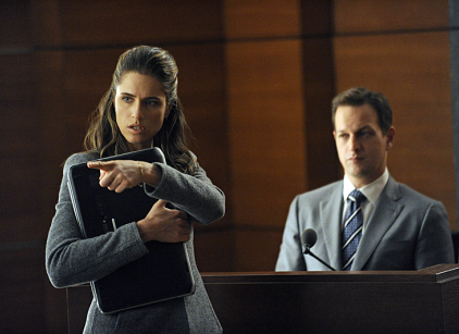Watch The Good Wife Season 4 Episode 8 Online