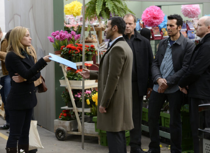 Watch Covert Affairs Season 3 Episode 16 Online