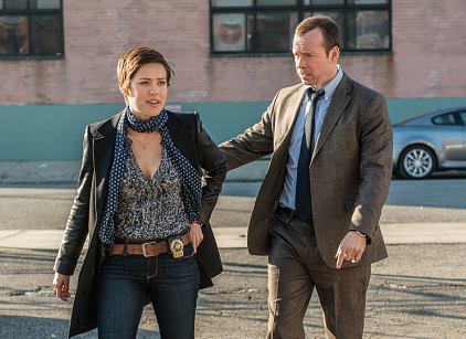Watch Blue Bloods Season 3 Episode 13 Online