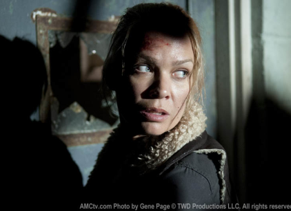 Watch The Walking Dead Season 3 Episode 14 Online