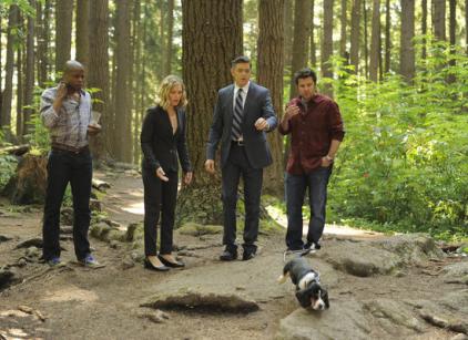 Watch Psych Season 7 Episode 8 Online