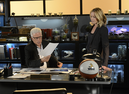 Watch CSI Season 13 Episode 19 Online