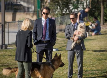 Watch Franklin & Bash Season 3 Episode 5 Online