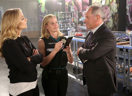 Watch CSI Season 14 Episode 4 Online