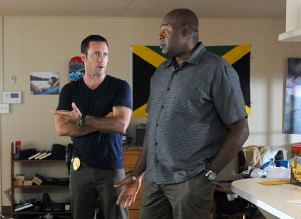 Watch Hawaii Five-0 Season 4 Episode 8 Online
