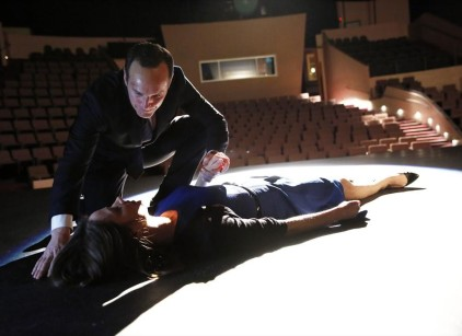 Watch Agents of S.H.I.E.L.D. Season 1 Episode 19 Online