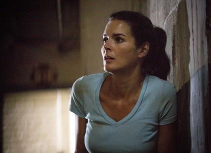 Watch Rizzoli & Isles Season 5 Episode 8 Online