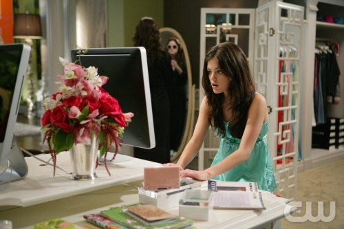 Rose at Her Computer
