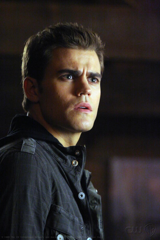Paul Wesley as Stefan Salvatore