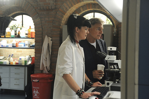 Gibbs, Abby at Work
