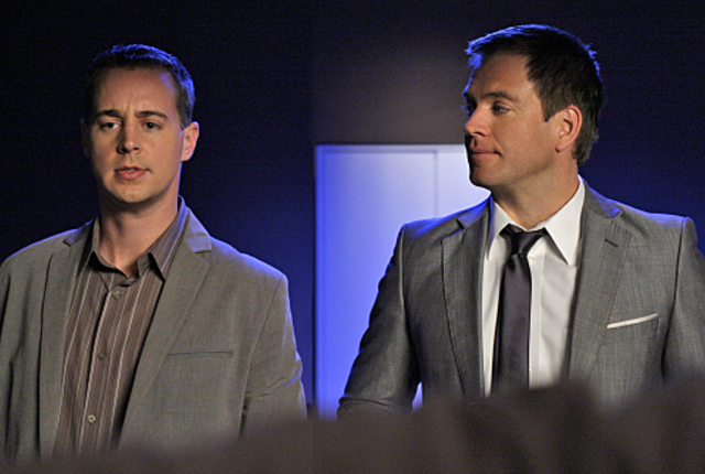 Mcgee-and-dinozzo-picture