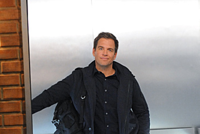 Anthony dinozzo jr pic
