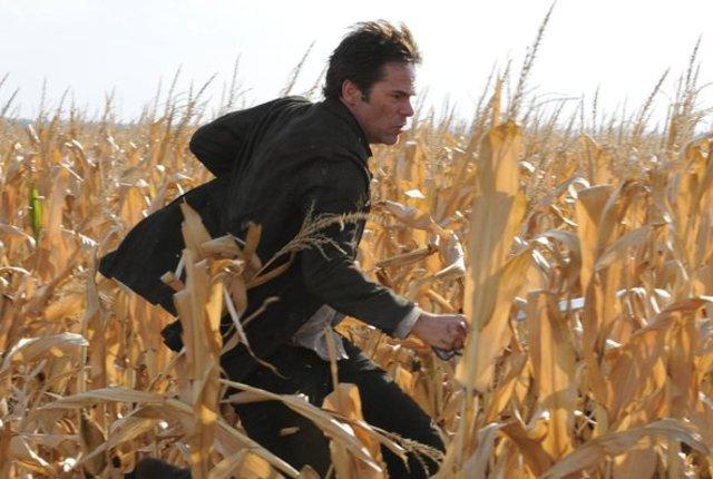 Miles on the run