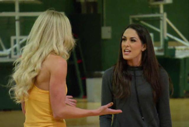 Brie bella vs summer rae