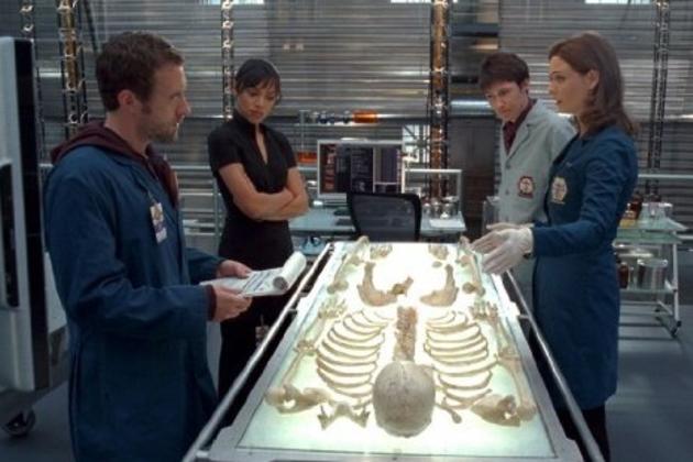 The-bones-team