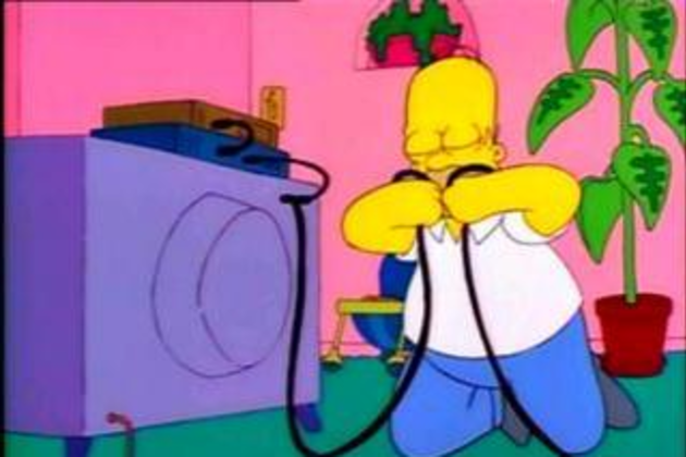 Homer-steals-cable
