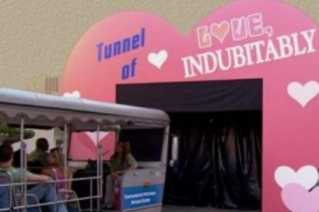 The-tunnel-of-love-picture