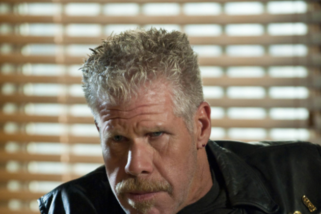 Ron-pearlman-pic