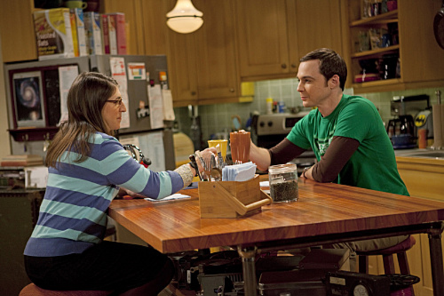Sheldon-and-amy-photo