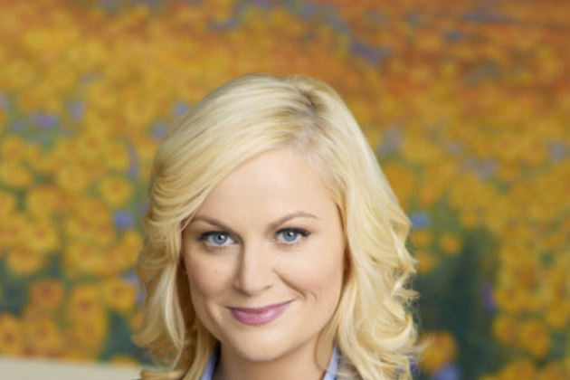 Amy-poehler-promo-picture