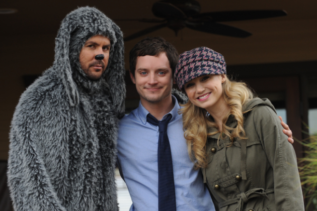 The-wilfred-cat