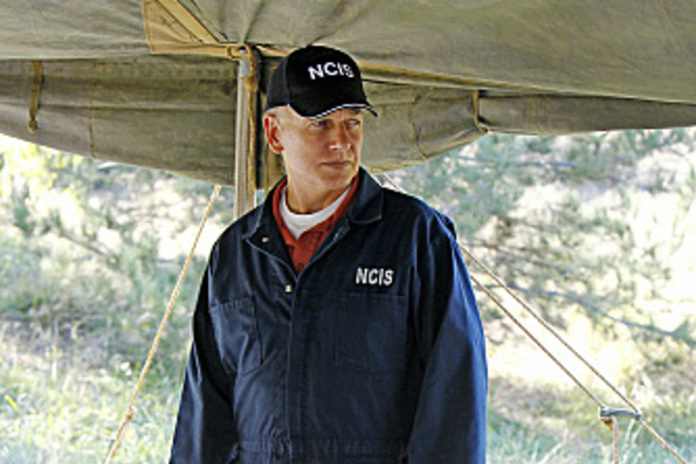 Special-agent-gibbs-pic