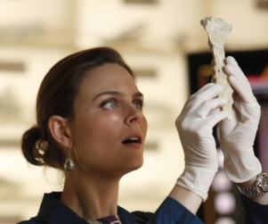 Possibly Coming to Fox: A Bones/Lie to Me Crossover