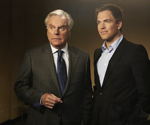 "NCIS Review: ""Flesh and Blood"""