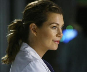 Grey's Anatomy Spoilers: A Series in Transition