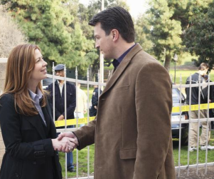 Dana Delany: Goodbye Desperate Housewives, Hello Castle
