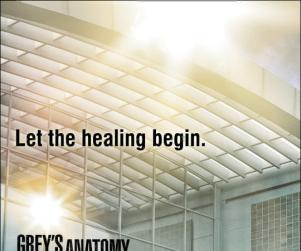 Grey's Anatomy Season 7 Posters: Choose Your Favorite!